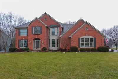Clermont County Single Family Home For Sale: 699 Miami View Court