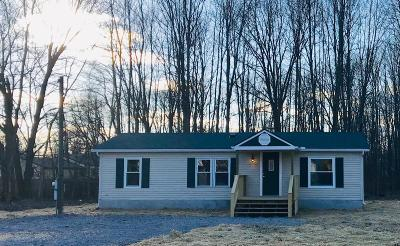 Clermont County Single Family Home For Sale: 6313 Manila Road