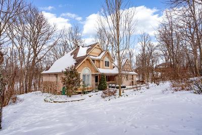 Hamilton County Single Family Home For Sale: 8330 Omaha Drive