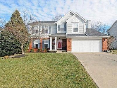 Warren County Single Family Home For Sale: 942 Stone Ridge Lane