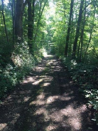Adams County Residential Lots & Land For Sale: McCoy Road