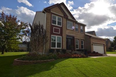 Sharonville Single Family Home For Sale: 12018 Diamondview Drive