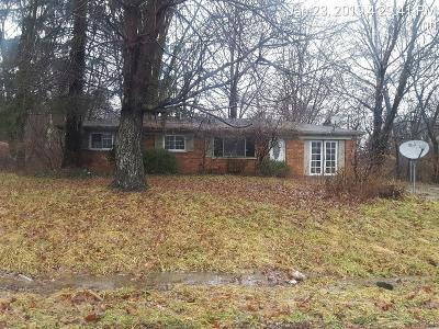 Single Family Home For Sale: 564 Hal Cor Lane