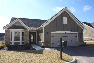 Single Family Home For Sale: 6698 Liberty Circle