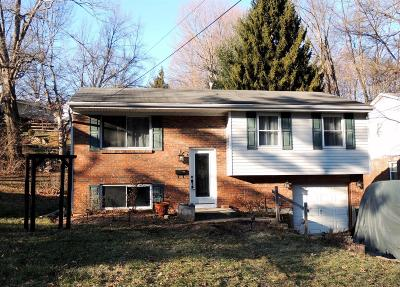 Cincinnati Single Family Home For Sale: 6068 Tridale Court
