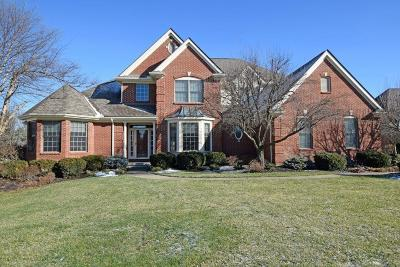 Deerfield Twp. Single Family Home For Sale: 4382 Southridge Drive