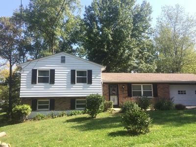 Single Family Home For Sale: 4168 Gleneste Withamsville Road