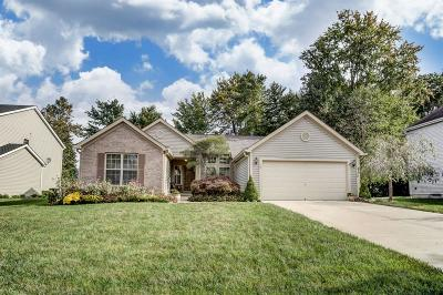 Single Family Home For Sale: 4176 Sagewood Drive