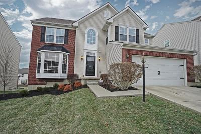 Turtle Creek Twp Single Family Home For Sale: 4882 Eagle Ridge Court