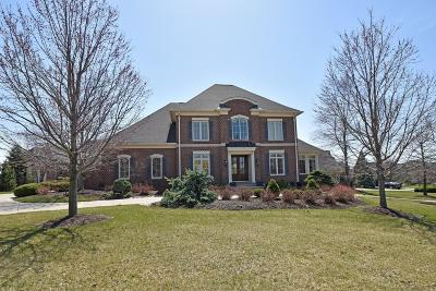 Deerfield Twp. Single Family Home For Sale: 8775 South Shore Place