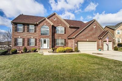 Liberty Twp Single Family Home For Sale: 7408 Airy View Drive