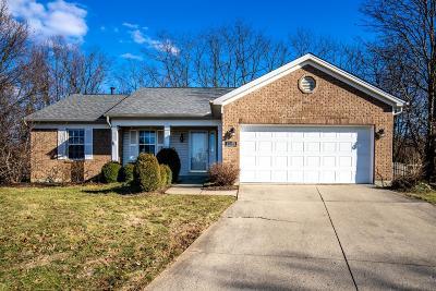 Single Family Home For Sale: 4149 Bettyhill Lane