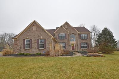 Single Family Home For Sale: 6910 Long Drive Lane