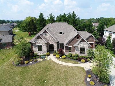 Single Family Home For Sale: 653 Copper Cove Court