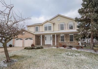 Single Family Home For Sale: 3380 Woodside Drive