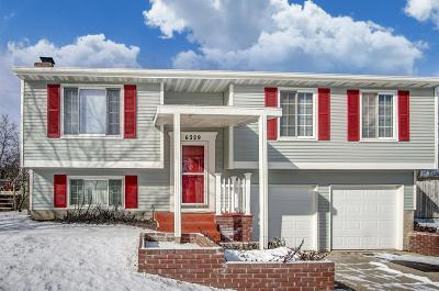Liberty Twp Single Family Home For Sale: 6329 Port Lane
