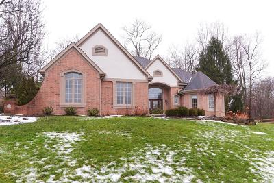 Loveland Single Family Home For Sale: 160 Pheasantlake Drive