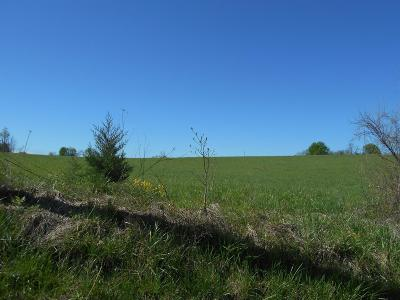 Highland County Residential Lots & Land For Sale: 1 E New Market Road