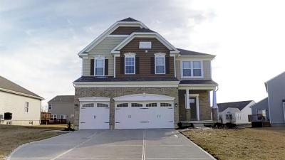 Hamilton County, Butler County, Warren County, Clermont County Single Family Home For Sale: 803 Hocking Meadow Circle