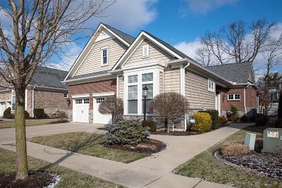 Single Family Home For Sale: 114 Village Gate Lane