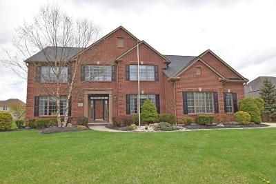 Single Family Home For Sale: 4106 Village Ridge Drive