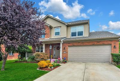 Cincinnati Single Family Home For Sale: 5308 Panther Court