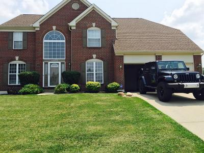 Hamilton County, Butler County, Warren County, Clermont County Single Family Home For Sale: 12172 Deer Chase Drive