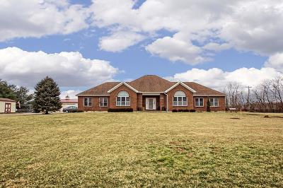Single Family Home For Sale: 6081 Edwardsville Road