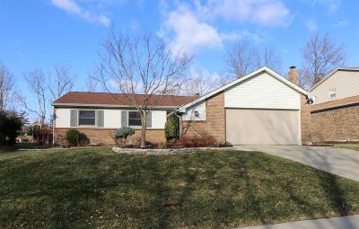 Cincinnati Single Family Home For Sale: 5556 Revmal Lane
