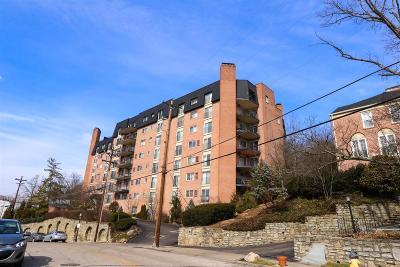 Cincinnati Condo/Townhouse For Sale: 880 Rue De La Paix #T17