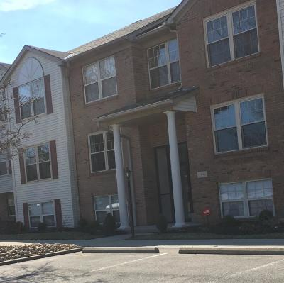 Cincinnati Condo/Townhouse For Sale: 144 Palisades Pointe #3