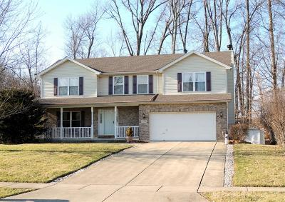 Single Family Home For Sale: 6248 Deerhaven Lane
