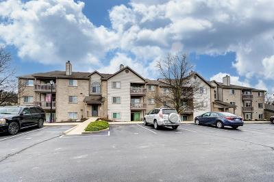 West Chester Condo/Townhouse For Sale: 8173 Autumn Woods Lane #104