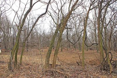 Highland County Residential Lots & Land For Sale: Washburn Road