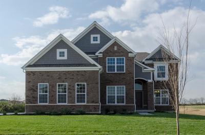 Deerfield Twp. Single Family Home For Sale: 6863 Roberts Park Drive