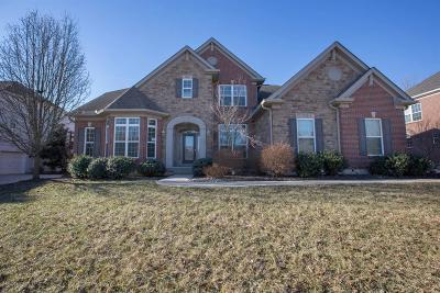 Deerfield Twp. Single Family Home For Sale: 6611 Palmetto Drive