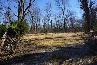 Green Twp Residential Lots & Land For Sale: 5126 Race Road