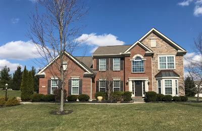 Loveland Single Family Home For Sale: 229 Thomas Paxton Court
