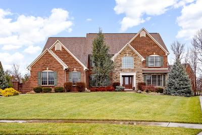 Clermont County Single Family Home For Sale: 6681 Sandy Shores Drive