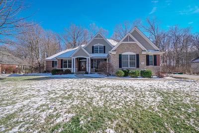 Hamilton Single Family Home For Sale: 1631 Hawk Ridge Drive