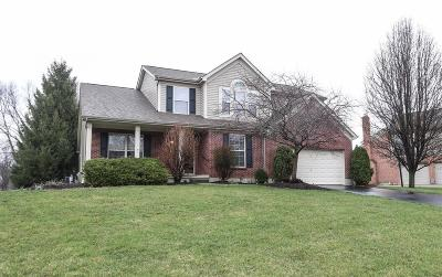 Single Family Home For Sale: 786 Andrea Drive