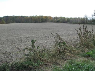 Clinton County Residential Lots & Land For Sale: 1 Gibson Road