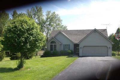 Adams County, Brown County, Clinton County, Highland County Single Family Home For Sale: 794 Waynoka Drive