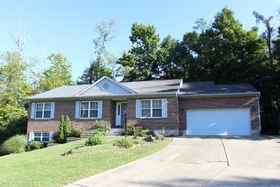 Single Family Home For Sale: 436 Auxier Drive