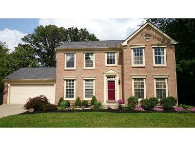 Sycamore Twp Single Family Home For Sale: 12070 Stillwind Drive