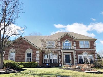 Warren County Single Family Home For Sale: 7389 Windsor Meadow Drive