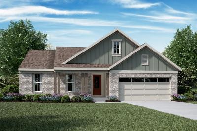 Loveland Single Family Home For Sale: 205 W Decatur Lane