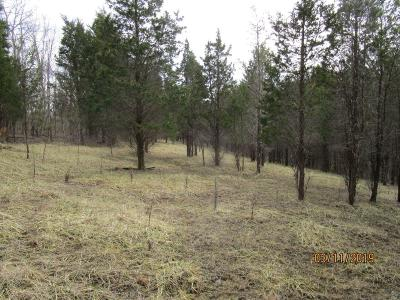 Residential Lots & Land For Sale: 244 McCormick Lane
