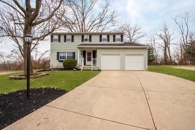 Colerain Twp Single Family Home For Sale: 8623 Willowview Court