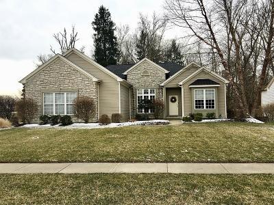 Loveland Single Family Home For Sale: 401 County Down Lane